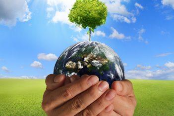 Al-Huda School Amping Up, Going Green & Global!